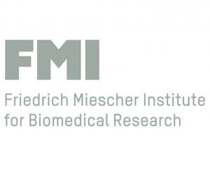 FMI Basel