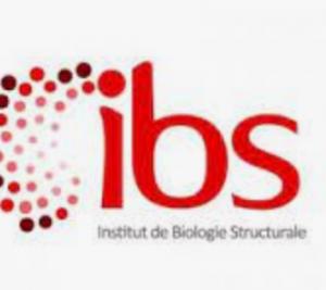 IBS Grenoble