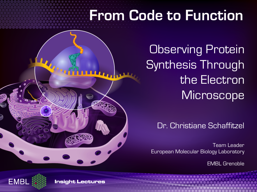 Click on the image to watch the EMBL Insight Lecture 2013