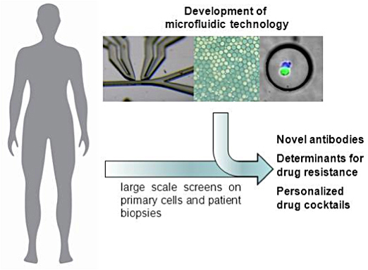 Microfluidic approaches in drug discovery and personalised medicine