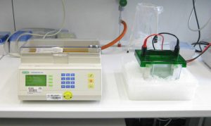 SDS PAGE equipment