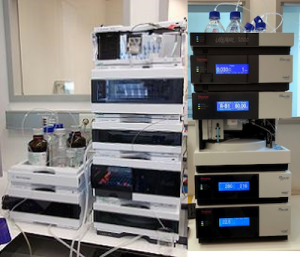 1200 Infinity HPLC (Agilent) /Ultimate 3000 HPLC (ThermoFisher Scientific)