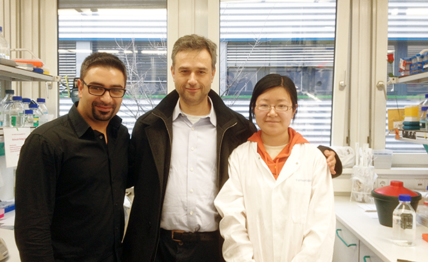 Meijers, centre, with collaborators Finci and Jie Zhang at EMBL Hamburg. PHOTO: EMBL/Rob Meijers