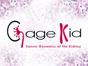 CAGEKID: Cancer genomics of the kidney