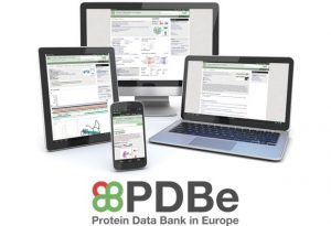 PDBe launches a new, responsive, interactive website for structural biology