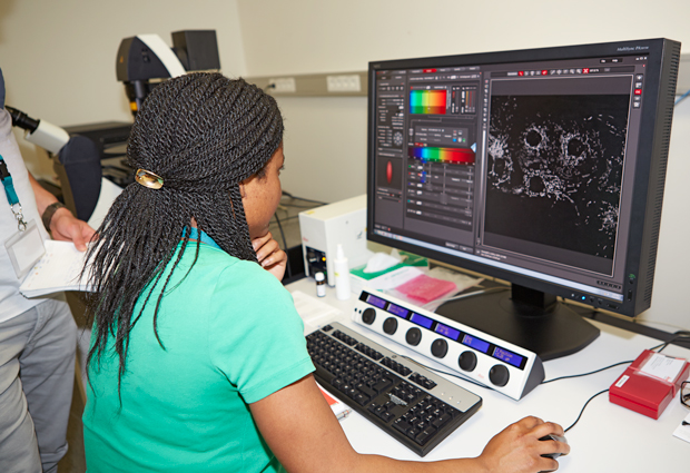 Hands-on sessions were a crucial part of the course. PHOTO: EMBL Photolab/Marietta Schupp