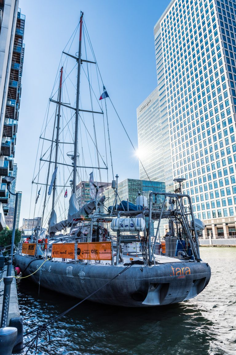 Tara expeditions docks in London, 2015