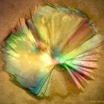 Crystal Sun by Kaare Bjerregaard-Andersen (NCMM)