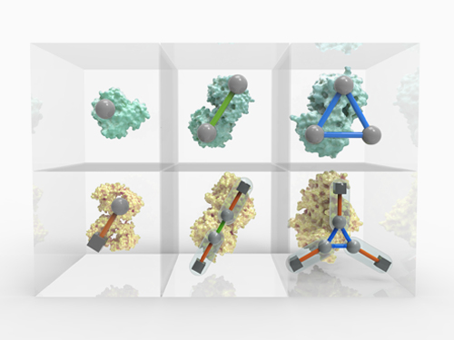 Periodic Table of Protein Complexes, Ahnert et al., Science 2015