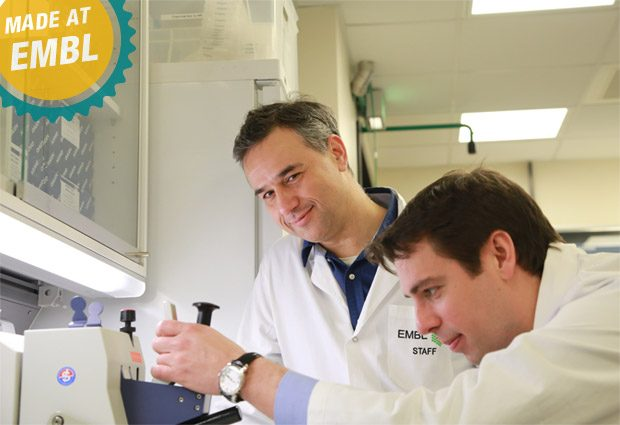 Rob Meijers and Stephane Boivin at the Sample Preparation and Characterisation facility. PHOTO: EMBL/Rosemary Wilson
