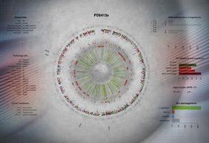 Breast cancer studies reveal new genes, mutations
