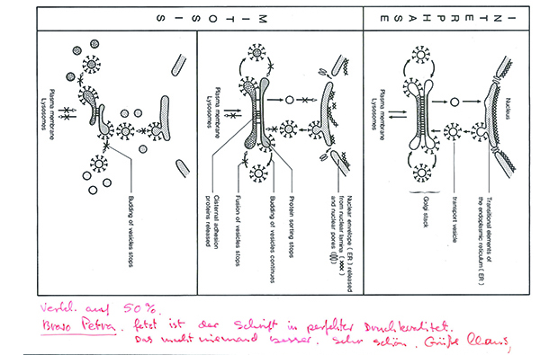 A hand drawn graphic, complete with appreciative complements from Claus Christensen, the first head of EMBL's Photolab.