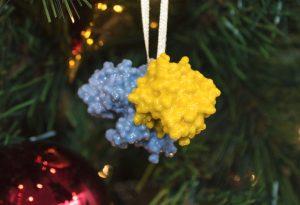 3D printout: molecular structure of cholera