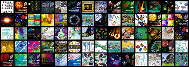A glance at just some of Petra's graphics from recent years. Images: EMBL/Petra Riedinger