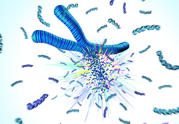 Illustration of an inherited mutation in the TP53 gene, which likely causes chromosome 'explosions' linked to cancer.