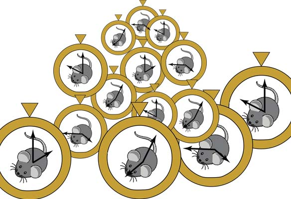 Artist's interpretation of the mouse epigenetic clock.