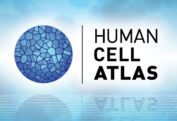 Human Cell Atlas logo and motif