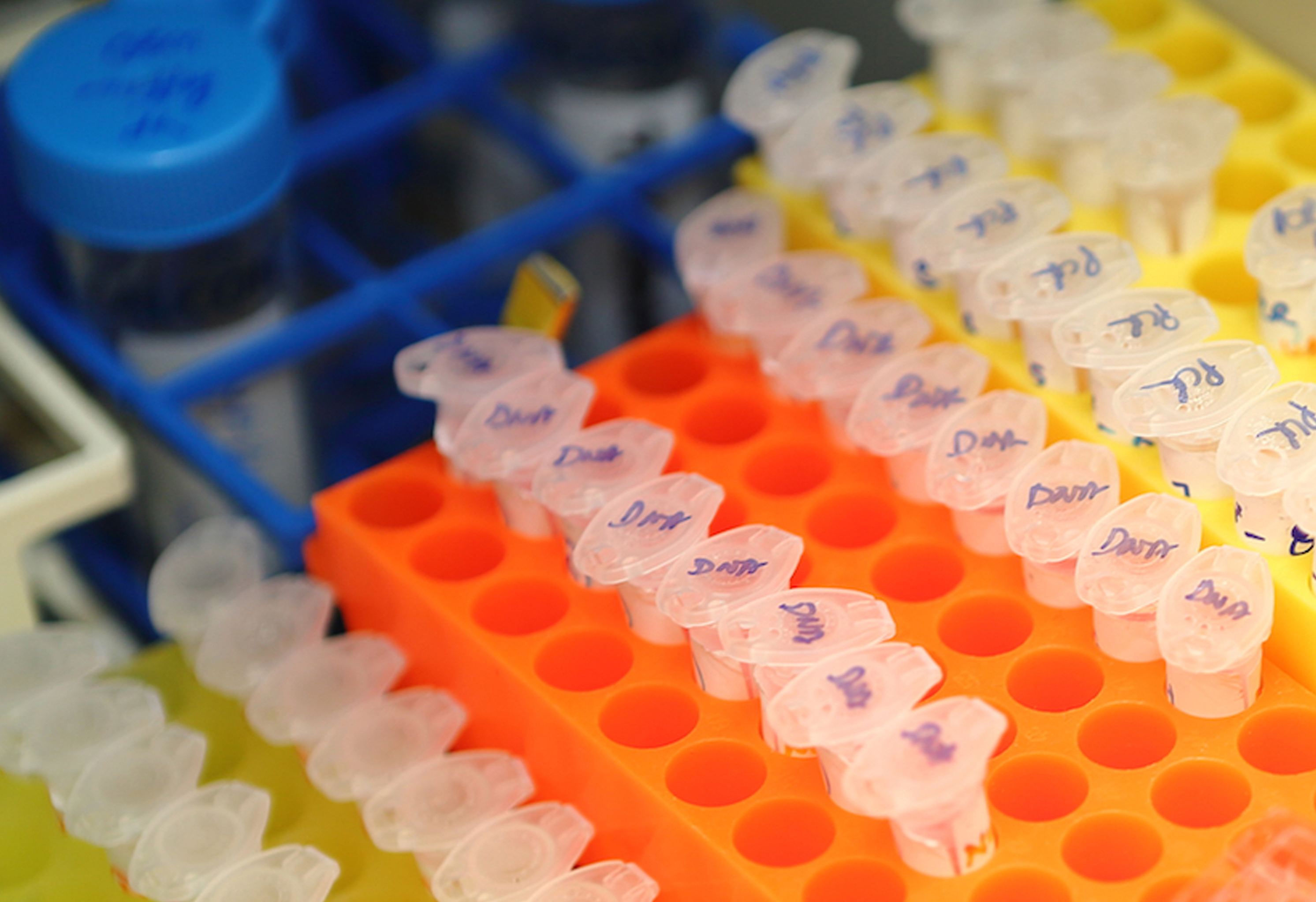 Biological samples held in a biobank. (Stock image courtesy of CRG.)