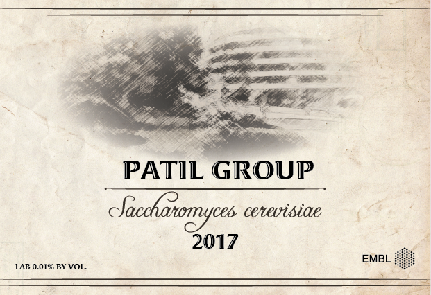 wine label with Patil Group and S. cerevisiae