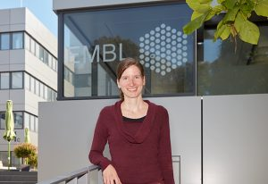 New EMBL group leader Sara Cuylen-Häring will explore biophysical properties of chromosomes and other cellular assemblies.