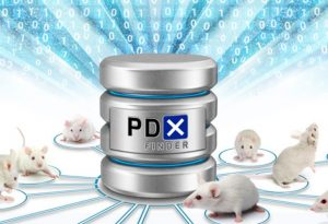 White mice next to representation of PDX Finder data repository