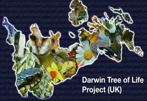 Darwin Tree of Life Project