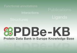 PDBe-KB logo