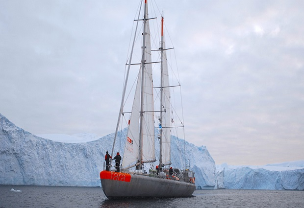 Tara Oceans Expedition ship in the arctic ocean