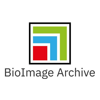BioImage Archive Logo