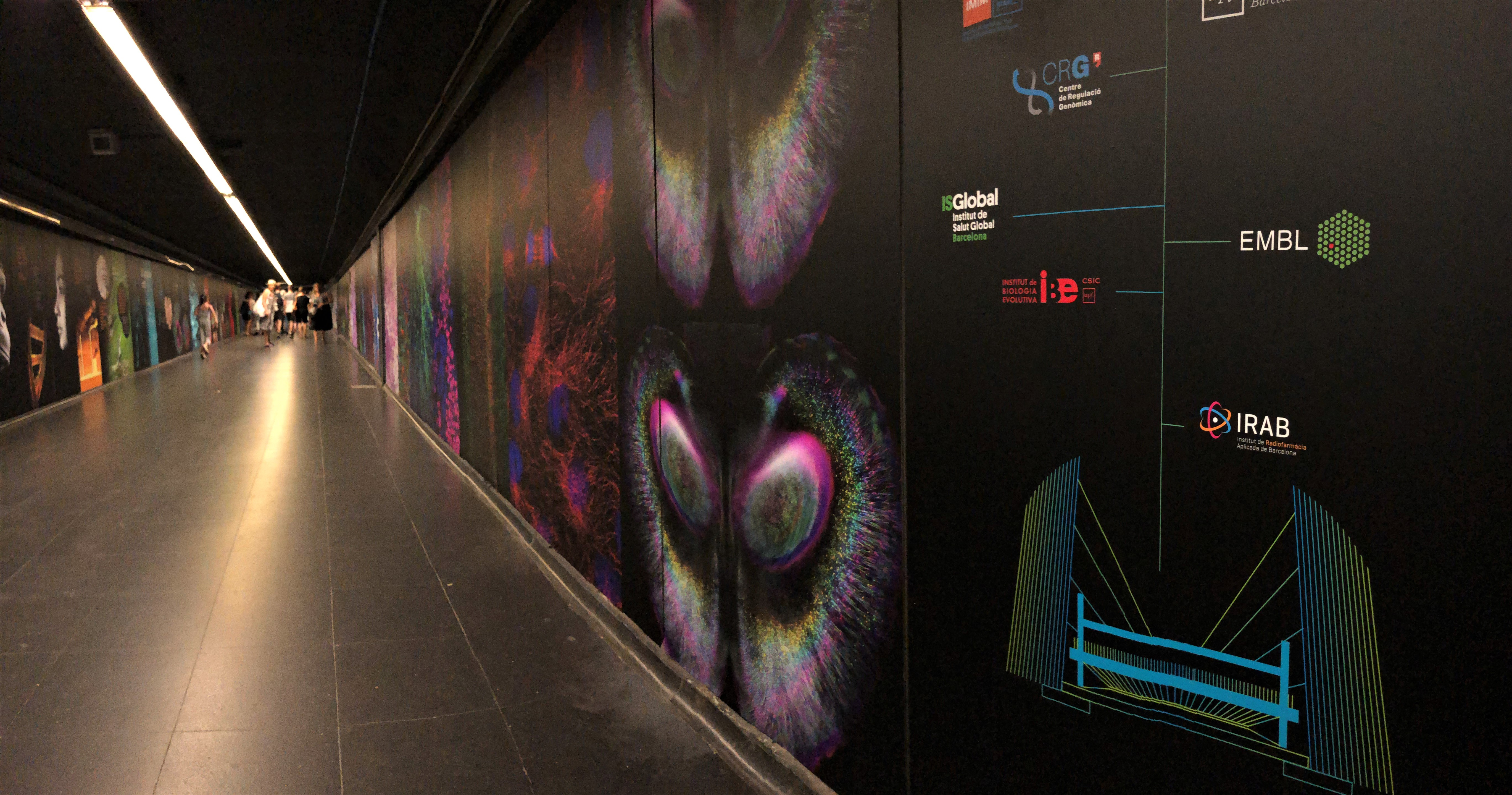 Art exhibition in Barcelona Metro station