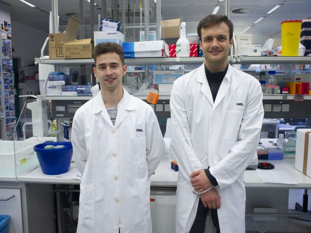 Steffen Lemke and Jakob Keck Genomics Core Facility
