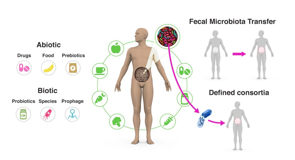 Gut microbiome. Rob Finn slide at New Scientist Live 2019