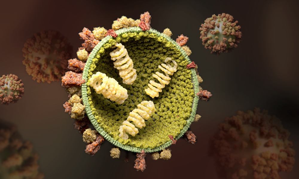 The Influenza virus
