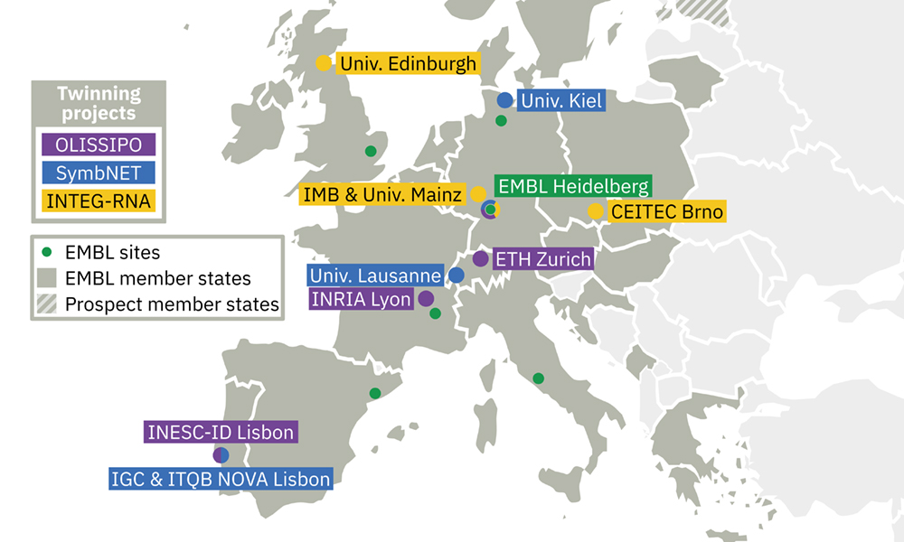 Map showing institutes involved with EMBL in Twinning projects