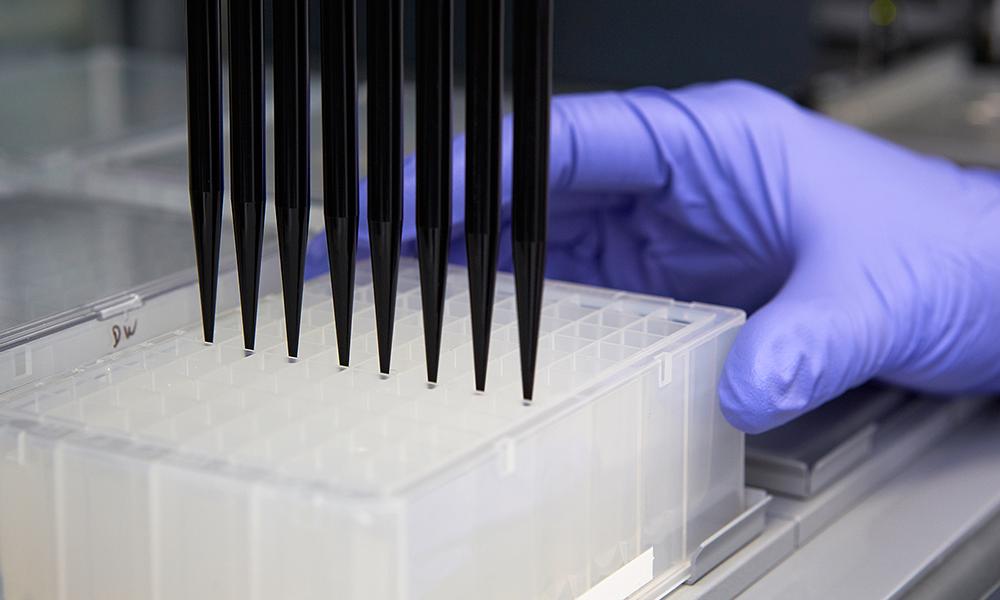 Liquid handling robot transfering protein crystalisation solutions