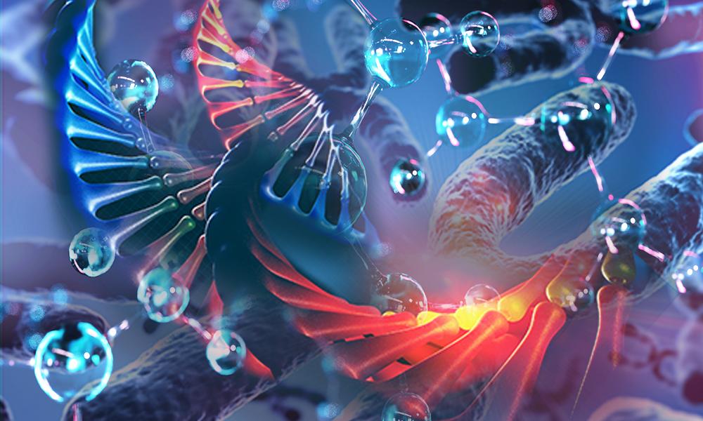 epigenetic reprogramming, epigenetic memory, Hackett group