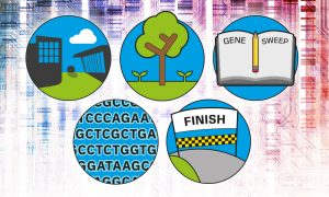 Five things you probably didn't know about the Human Genome Project