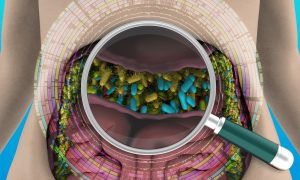 A magnifying glass hovers over the human gut, revealing its biodiversity.