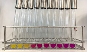 A metal rack holding glass test tubes with yellow and red solutions in them.