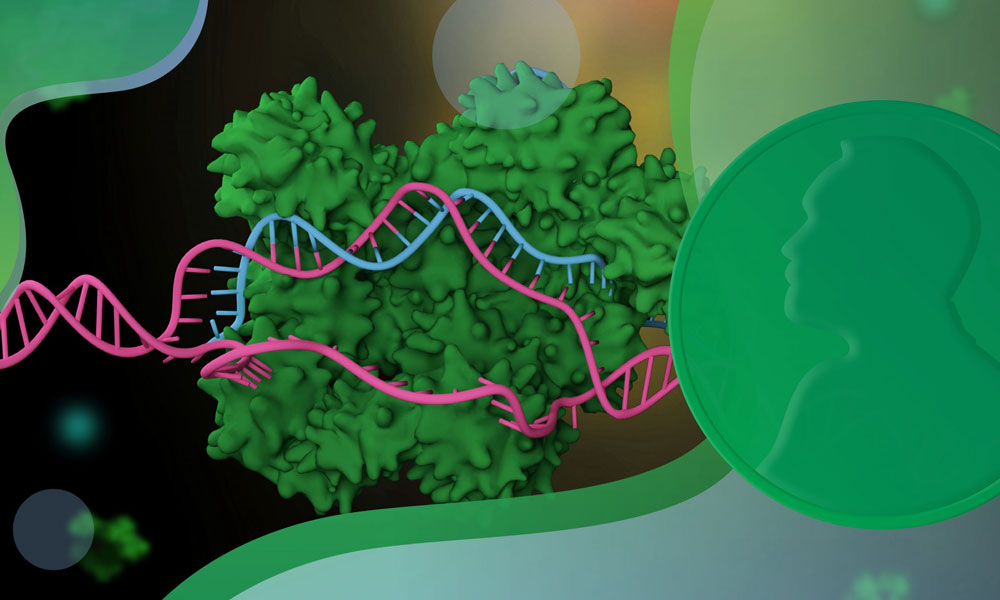 Graphical representation of genome editing tool CRISPR in green and pink. Nobel prize medal on the right.