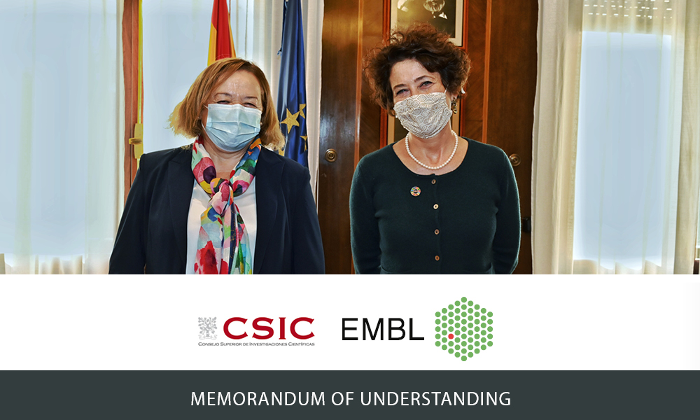 Edith Heard and Rosa Menéndez in front of the Spanish and the European flag, wearing face masks. Institute logos of EMBL and CSIC. Text: Memorandum of Understanding.