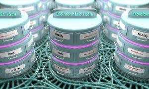 COVID-19 bioinformatic tools