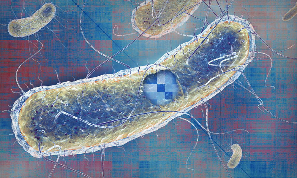 Illustration of a rod-shaped bacterial cell, superimposed on a red and blue background.