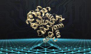 Haemoglobin protein structure shown over a matrix symbolising artificial intelligence