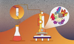 Illustration of a laboratory flask to the left of a microscope against an orange/grey background with a zoomed-in cut-out of the microscope view, which is colourful molecules.