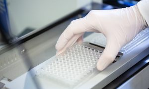 A scientist (only their hand is visible) inserting a 96-well plate into a sample dispensing device in the Sample Preparation and Characterisation Facility in Hamburg.