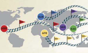 World map showing the origin of 32 diverse genome samples