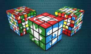 Genome assemblies