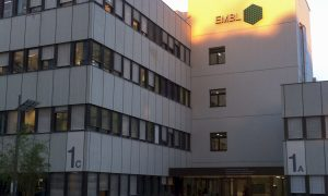 EMBL Heidelberg's main building, the top of the façade lit up by sunlight.