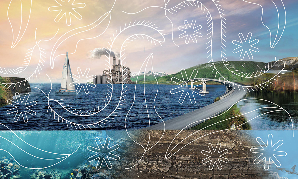 Illustration of a rocky coastline with sailing boat, mountains, underwater organisms, bridge and factory in the background.
